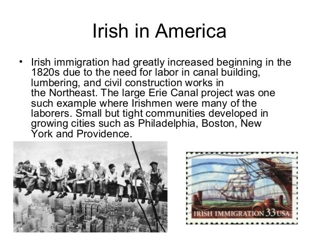 a study of the irish immigration to america Immigration debates flood news sources today, but the stories of those who flee   addressing the issues faced by irish immigrants to america, stephen crane  also  and the korean-american daughter learning of her mother's involvement.