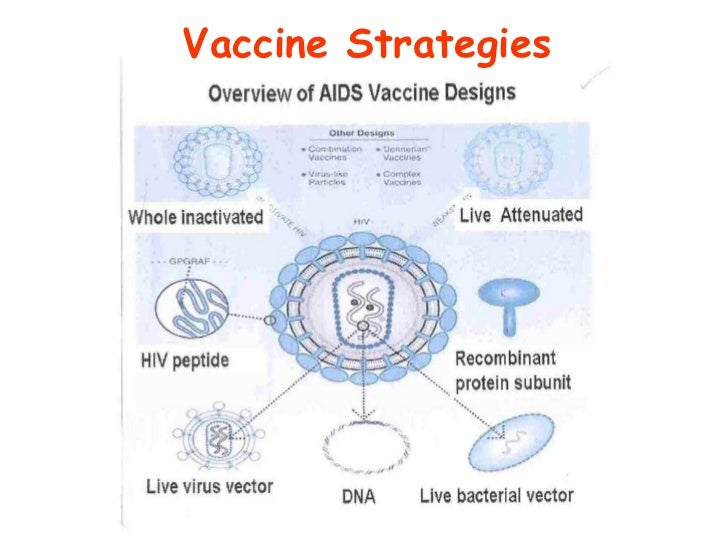 hiv vaccine essay Essay on hiv/aids: signs, symptoms and prevention human immunodeficiency virus infection/acquired immunodeficiency syndrome (hiv/aids) is a disease of the human immune system caused by the human immunodeficiency virus (hiv) during the initial infection a person may experience a brief period of .