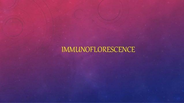 IMMUNOFLORESCENCE