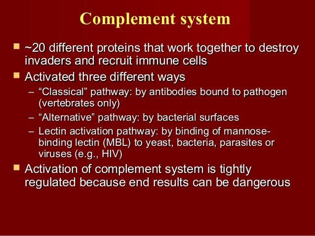 Interferon Antiviral ActivityInterferon Antiviral Activity