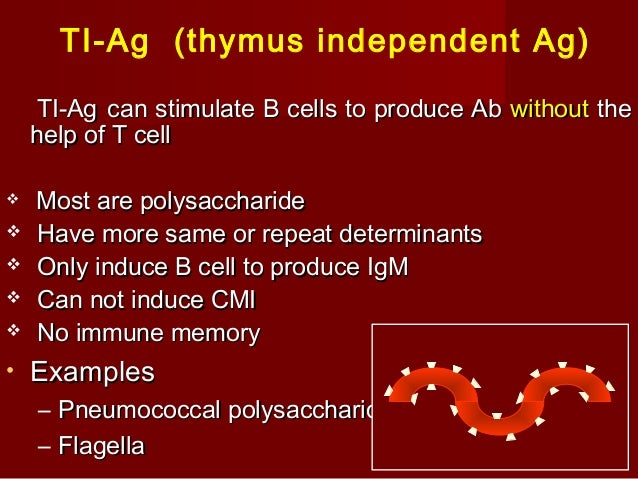introduction to Immunology 1st and 2nd lecture