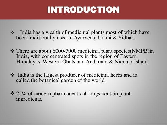 Immunomodulatory plant Slide 3