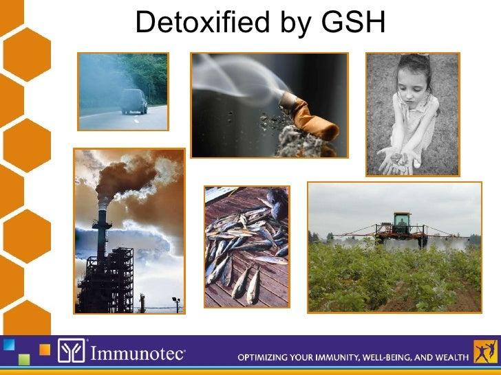 Immunotec Presentation Updated 24 11 09