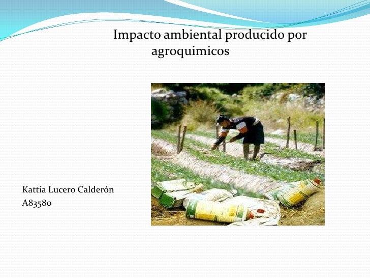 Impacto ambiental producido por            agroquimicos<br />Kattia Lucero Calderón<br />A83580<br />