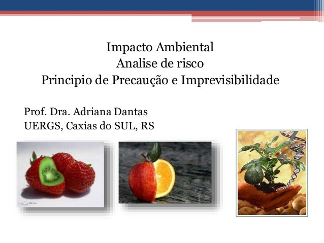 Impacto Ambiental Analise de risco Principio de Precaução e Imprevisibilidade Prof. Dra. Adriana Dantas UERGS, Caxias do S...