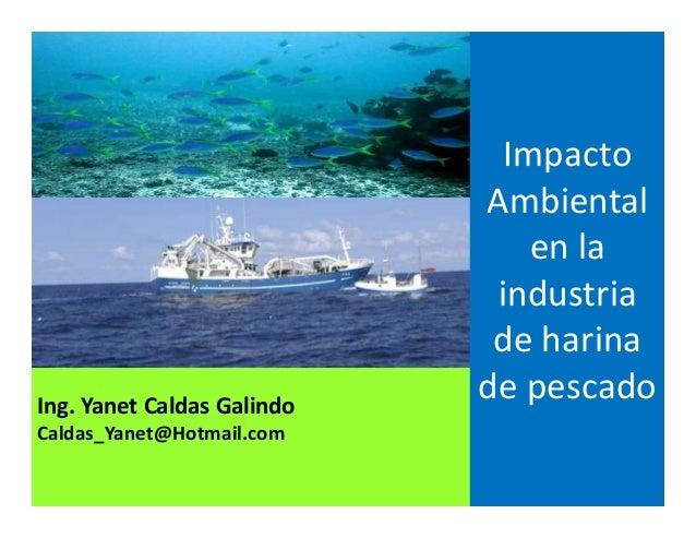 Ing. Yanet Caldas Galindo CIP: 115456 Caldas_Yanet@Hotmail.com Impacto Ambiental en la industria de harina de pescado