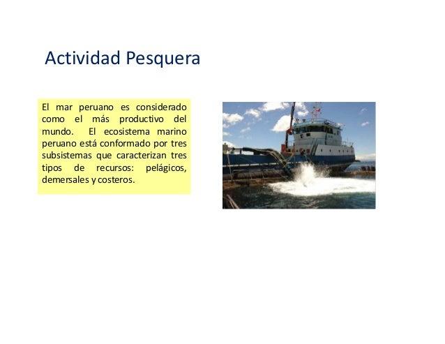 Impacto ambiental en la actividad pesquera Slide 2