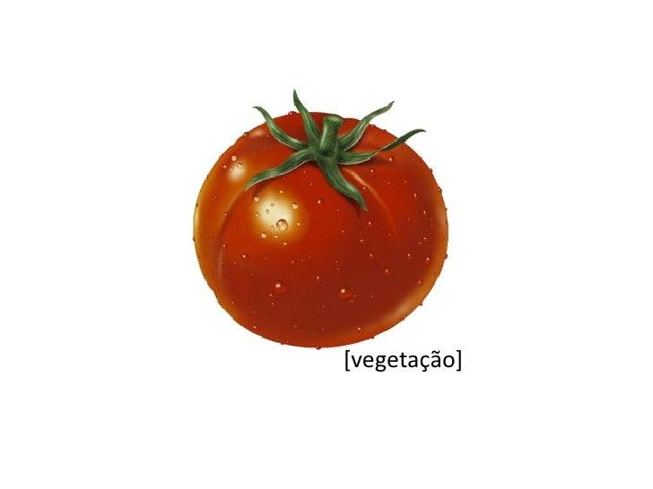[vegetação]