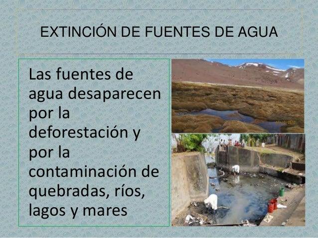 EXTINCIÓN DE FUENTES DE AGUA  Las fuentes de  agua desaparecen  por la  deforestación y  por la  contaminación de  quebrad...