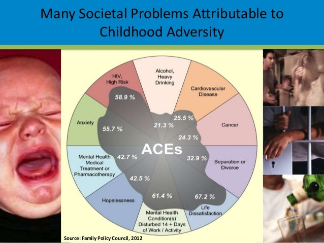 More On Adverse Developmental Impacts >> Impact of aces