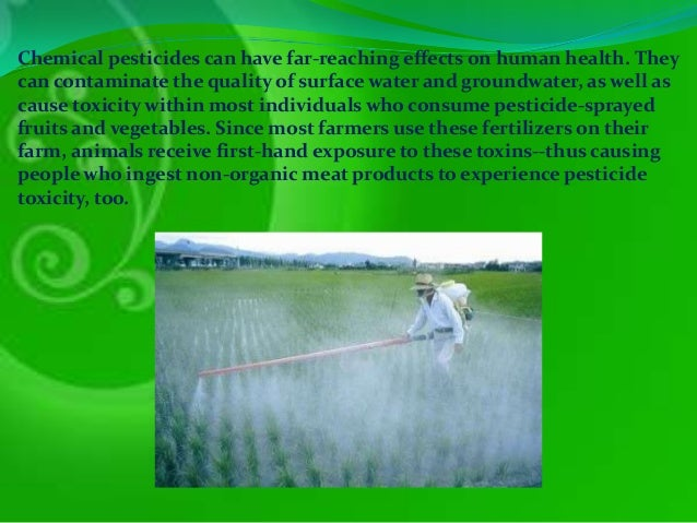 Biological impacts of the chemical deet essay