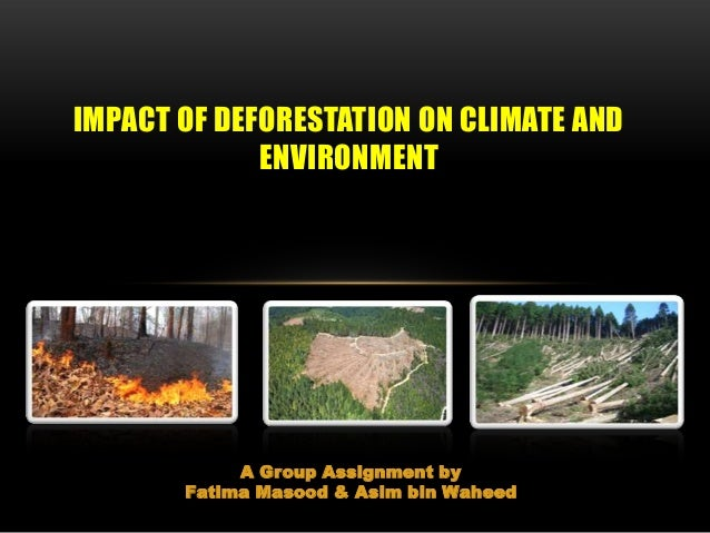 A Group Assignment by Fatima Masood & Asim bin Waheed IMPACT OF DEFORESTATION ON CLIMATE AND ENVIRONMENT
