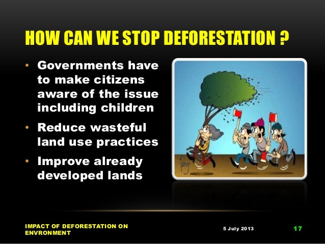 how can we prevent deforestation And what can we do in everyday life to protect people and  palm oil – deforestation for everyday products read  prevent the destruction of.