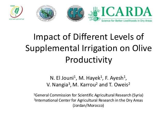 Impact of Different Levels of Supplemental Irrigation on Olive Productivity N. El Jouni1, M. Hayek1, F. Ayesh1, V. Nangia3...