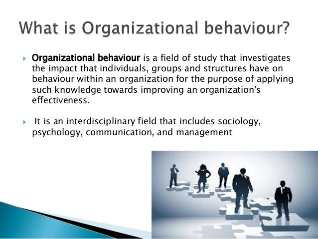 organsational behaviour Organizational behavior is the study of both group and individual performance and activity within an organization this area of study examines human behavior in a work environment and determines its impact on job structure, performance, communication, motivation, leadership, etc.
