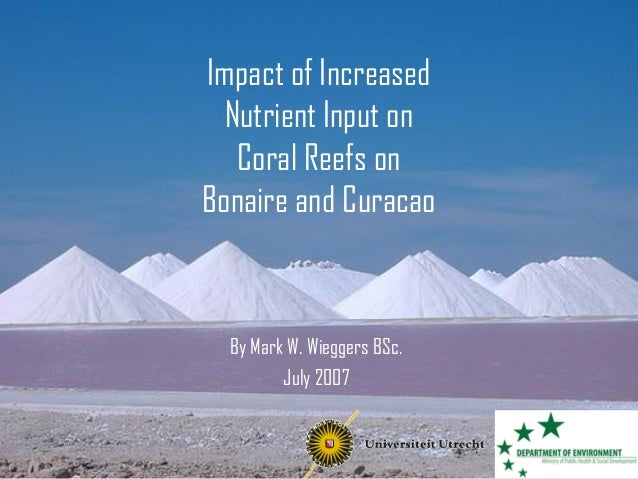 Impact of Increased Nutrient Input on Coral Reefs on Bonaire and Curacao By Mark W. Wieggers BSc. July 2007
