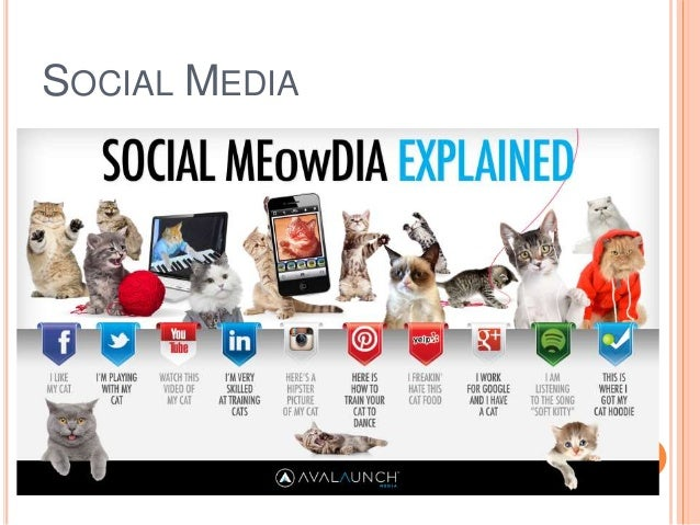 social media on society Here are some interesting facts and statistics about the social media landscape that show where we are today and where we might eventually end up during 2016.