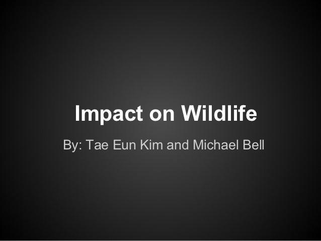 Impact on WildlifeBy: Tae Eun Kim and Michael Bell