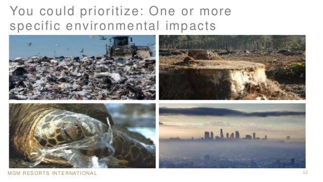 MGM RESORTS INTERNATIONAL 12 You could prioritize: One or more specific environmental impacts