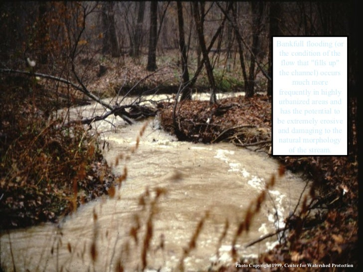 """Bankfull flooding (or the condition of the flow that """"fills up"""" the channel) occurs much more frequently in high..."""