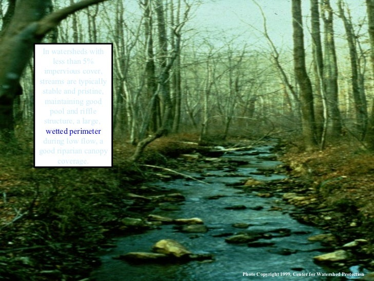 In watersheds with less than 5% impervious cover, streams are typically stable and pristine, maintaining good pool and rif...