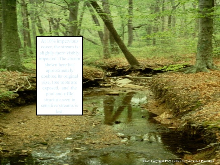 At 10% impervious cover, the stream is slightly more visibly impacted. The stream shown here has approximately doubled its...