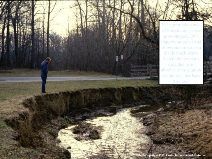 The surrounding area of this stream is also approximately 20% impervious cover and shows stream erosion that is much worse...
