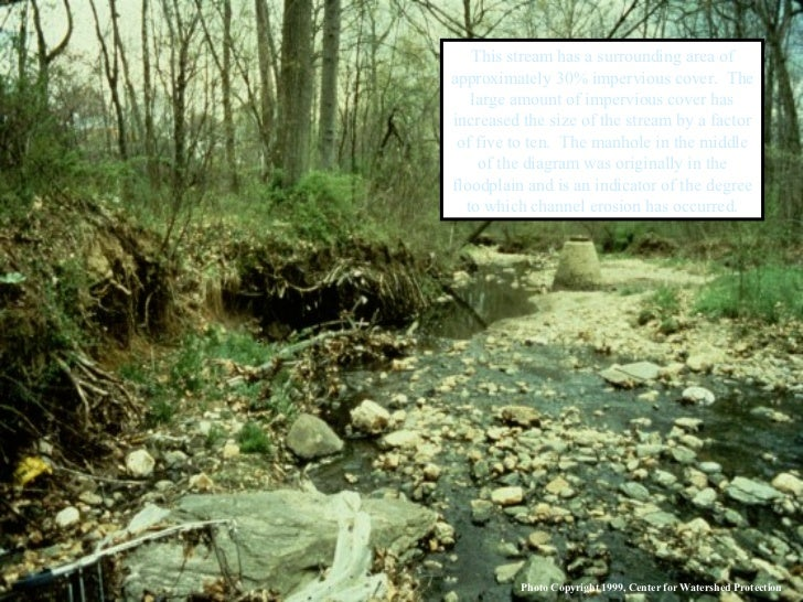 This stream has a surrounding area of approximately 30% impervious cover.  The large amount of impervious cover has increa...