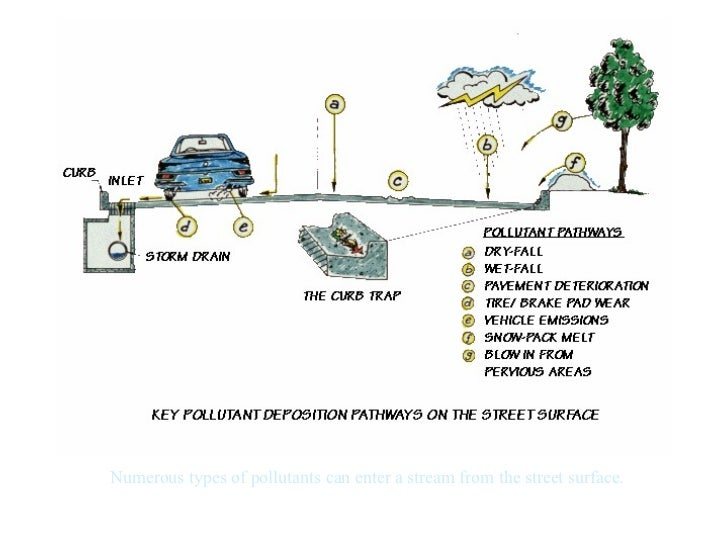 Numerous types of pollutants can enter a stream from the street surface.