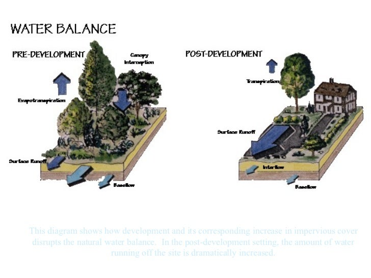 This diagram shows how development and its corresponding increase in impervious cover disrupts the natural water balance. ...