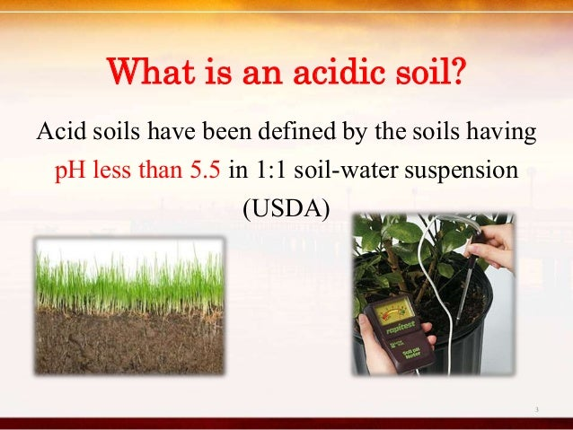 Impacts of soil acidity in wet zone sri lanka for What is soil