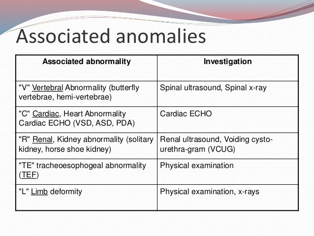 Etiology of imperforate anus