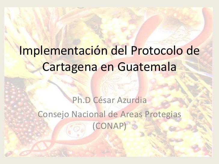 Implementación del Protocolo de    Cartagena en Guatemala           Ph.D César Azurdia   Consejo Nacional de Areas Protegi...