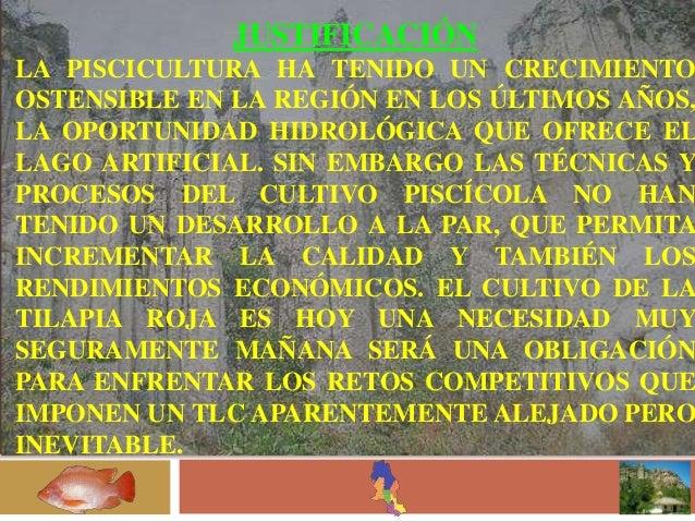 Imnplementacion for Piscicultura tilapia roja