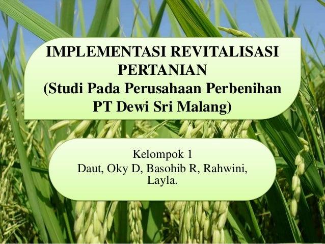 IMPLEMENTASI REVITALISASI  PERTANIAN  (Studi Pada Perusahaan Perbenihan  PT Dewi Sri Malang)  Kelompok 1  Daut, Oky D, Bas...