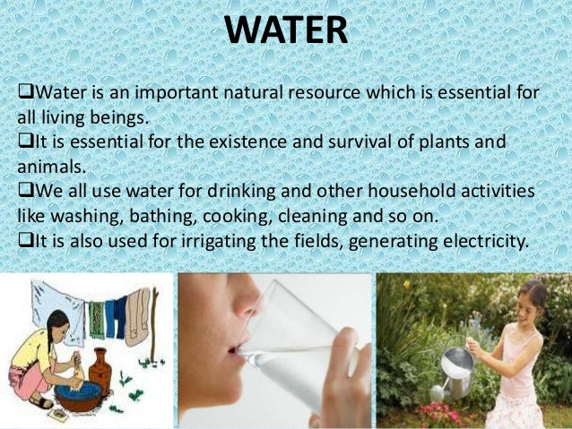 Why Water Is Important to Life