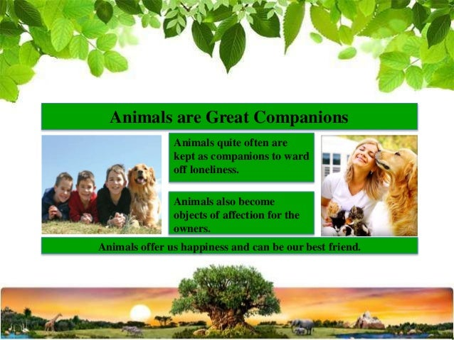 essay on importance of animals in human life Contextual translation of essay on importance of birds in our life in hindi into english human translations with examples: hindi, english to hindi.