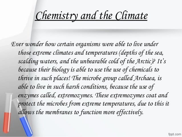 importance of chemicals in our daily life What are some examples of chemistry in daily life in daily life, showing how prevalent and important it chemistry chemistry is useful in our daily.