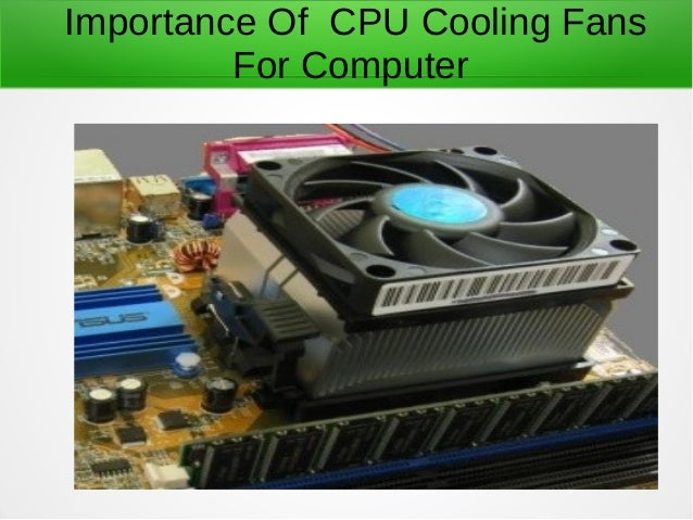 Importance Of Cpu Cooling Fans For Computer