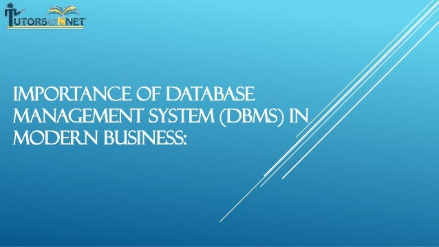 Importance of Database Management System (DBMS) in Modern Business: