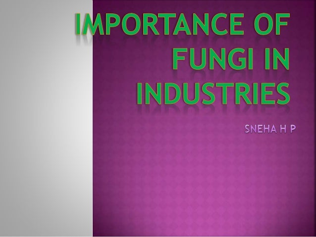 contents  Introduction Production of alcohol Bread making Fungi In drug production Antibiotics Immune suppressants ...