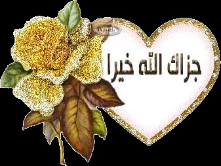 Importance of hadith