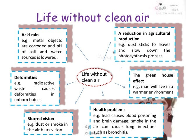 why is it important to keep environment clean