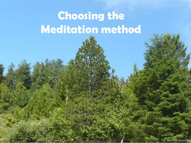 importance of meditation Julian websdale, contributor waking times meditation is helpful for the body, it stills anxiety, and is generally beneficial this is scientifically.