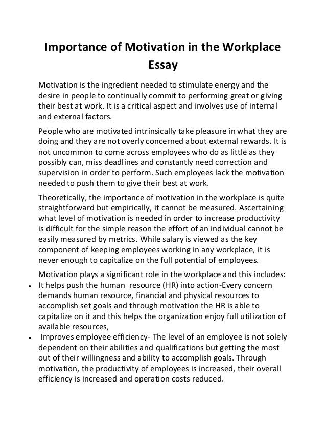 Motivation essay example