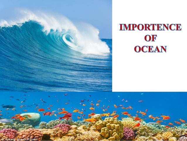 the importance of the ocean essay The importance of ocean exploration as soon as humanity existed, people were tempted to explore and discover everything around them this invincible desire has.