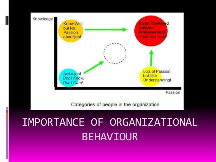 organizational behavior examples