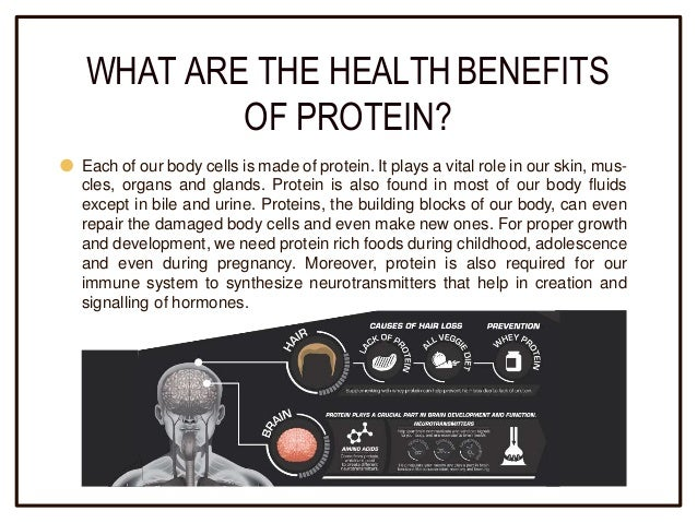 Why is Protein Important in Weight Loss | Health Benefits ...