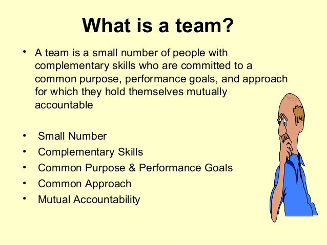importance of having a team