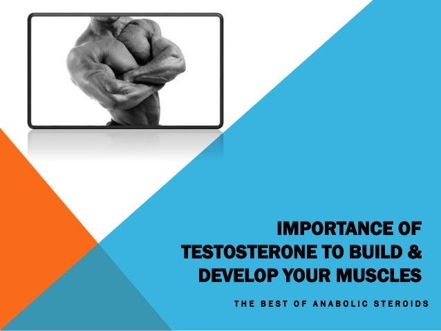 IMPORTANCE OF TESTOSTERONE TO BUILD & DEVELOP YOUR MUSCLES T H E B E S T O F A N A B O L I C S T E R O I D S